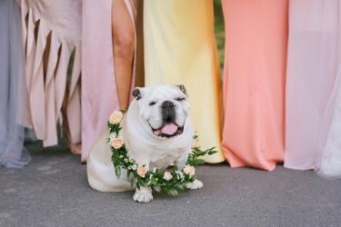 Hudson Valley Wedding 009