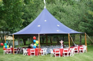 Circus Birthday Party 001